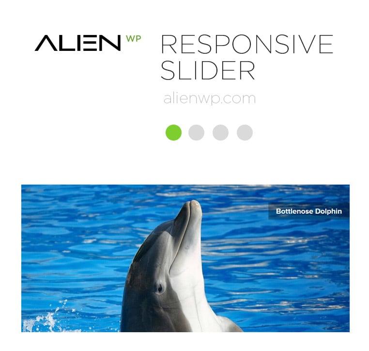 responsive-slider