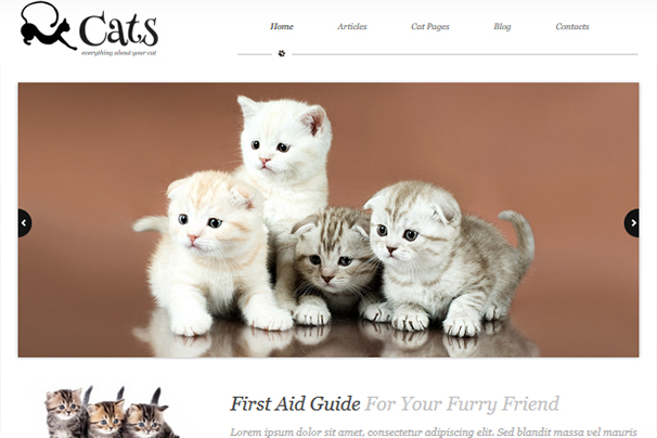 About Cats