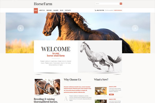 Promotion of Horse Farms