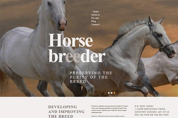 Horse Breeder