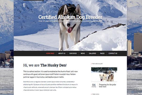 The Husky Den