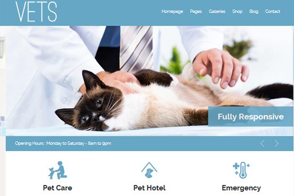 Veterinary Medical Health Clinic