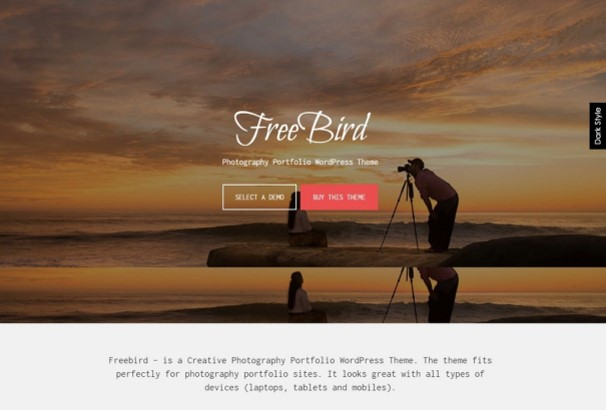 Freebird – WordPress theme. The theme fits perfectly for photography portfolio sites. It looks great with all types of devices (laptops, ...
