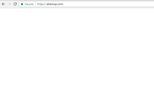 white screen of death, one of the common wordpress errors