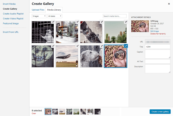 Create a New Gallery